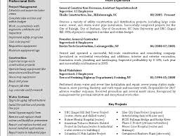 Sample Resume For Insurance Agent 100 Sample Resume For Building Custodian Proper Cover