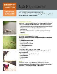 Resume Portfolio Examples by 10 Portfolio Resume Templates Free Download