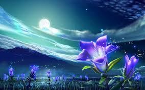 Moon Flowers Full Flower Moon Esbat Supermoon Chakrology