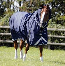 Rambo Lightweight Turnout Rug 6 No Fill Turnout Rugs Ideal For The Changeable British Summertime