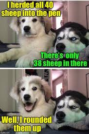 Pun Dog Meme - bad pun dogs memes imgflip