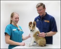 Veterinary Clinic Idaho Veterinary Internal Prairie Animal Hospital U2013 Improving The Human Animal Bond Through