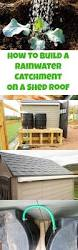 How To Build A Pole Barn Shed Roof by Best 25 Shed Roof Ideas On Pinterest Shed Roof Design Small