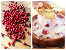 thanksgiving countdown white cheddar and cranberry dip
