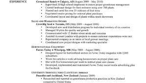 best written resumes ever resume award winning resume writing services distinctive