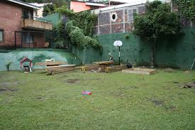 backyard forever changed international