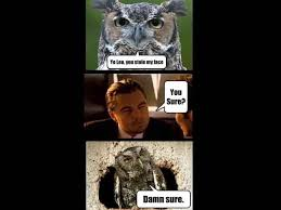 Memes De Leonardo Dicaprio - oscar 2014 memes de leonardo dicaprio alborotan redes sociales