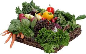 mental health benefits of a vegetable garden u2014 the veggie lady