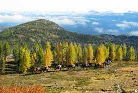 Montana natural attractions images 10 top rated tourist attractions in missoula planetware jpg