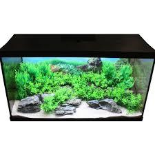 japanese aquascape hugo kamishi 80cm aquascaping complete decor display kit