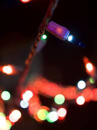 Zoo Lights Seattle by Project 366 December 2016 U2014 Fujimoto Potpourri
