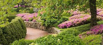 japanese garden elizabeth hubert malott japanese garden chicago botanic garden