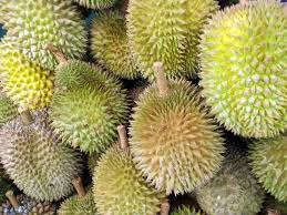 8 things you need to know about durian the world u0027s smelliest fruit
