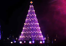 purple christmas tree purple christmas tree lights christmas lights decoration