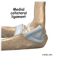 Collateral Ligaments Ankle Patient Education Concord Orthopaedics