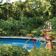 Backyard Gift Ideas 24 Best Backyard Stream Bed Images On Pinterest Backyard Stream