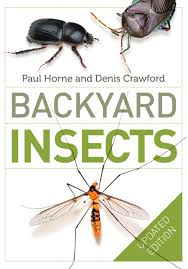 backyard insects updated edition by paul horne penguin books