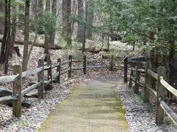 West Virginia wildlife tours images West virginia state wildlife center west virginia day tripper jpg