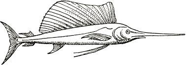 126 swordfish clipart tiny clipart
