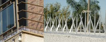 pigeon net bird spikes bird netting services in ahmedabad
