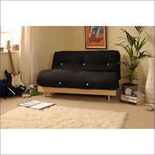 Best Place To Buy Sofa Bed Furniture Fabulous Loveseat Futon Fold Away Sofa Bed Ikea Futon