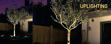 Led Landscape Light Kits Low Voltage Landscape Lights Set Image Of Low Voltage Landscape