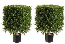 topiary trees artificial boxwood bushes square topiary faux topiary