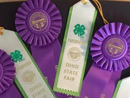 ohio state ribbon 2017 ohio state fair results ohio 4 h youth development
