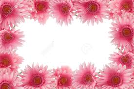 pretty colorful gerber daisy border or frame with spring colors