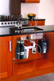 Kitchen Disposal by Best Way To Keep Your Garbage Disposal Clean