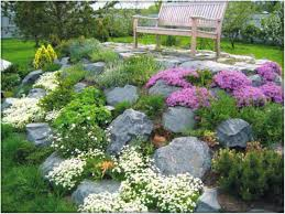 charming rock garden pictures ideas plans examples contemporary