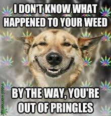 Memes Jokes - 4 20 humor the best weed jokes and memes for 4 20