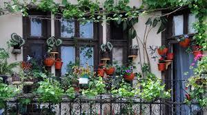 Vertical Garden For Balcony - pack your entire balcony with garden gizmodo australia