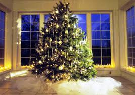 cheap trees for salecial with lights really