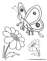 butterfly sunflower coloring sheet create a printout or activity