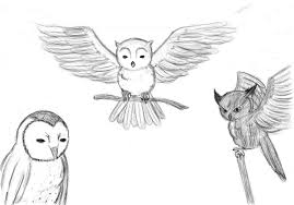 the artwork of versace owl sketches