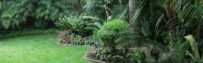 San Diego Landscape by San Diego Landscaping Resources And Information