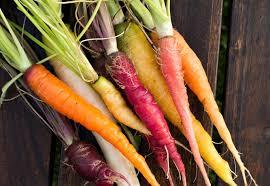 cuisiner les l馮umes anciens cuisine légumes oubliés yantra