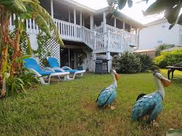 tybee island waterfront retreat savannah dream vacations