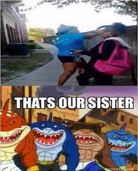 Sharkeisha Meme - sharkeisha fight video image gallery know your meme