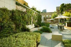 burbank water and power ecocampus ahbe landscape architects