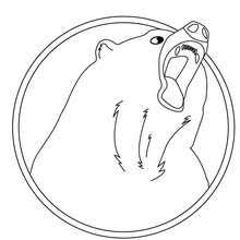 sun bear coloring pages hellokids