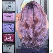 purple hair color formula 33 best hair coloring tips images on pinterest hair color hair