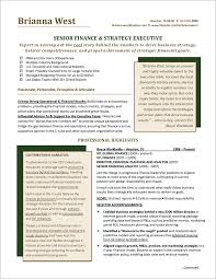 Example Finance Resume by 90 Best Resume Examples Images On Pinterest Resume Examples