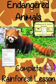 best 25 endangered animals lessons ideas on pinterest panda