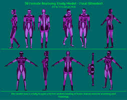 old updates 3d female anatomy study model u2013 24 6 14 u2013 running in