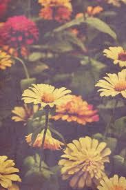 laufuhr test images hippie flowers
