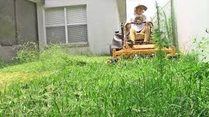 lawn care vlog 23 small yard with tall grass u0026 weeds youtube