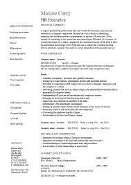 Technology Skills On Resume Sample Of Key Skills In Resume Example Key Skills Resume