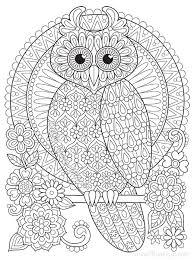 groovy owls coloring book by thaneeya mcardle u2014 thaneeya com